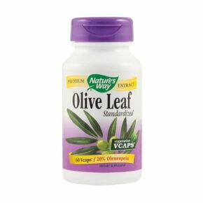 Olive Leaf 60 Capsule (20 Oleuropein)