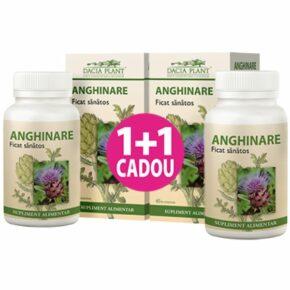 Anghinare dacia plant 1+1