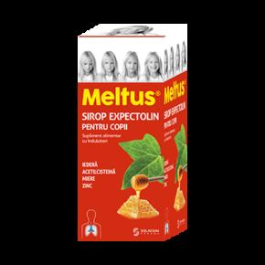 prod4_meltus1