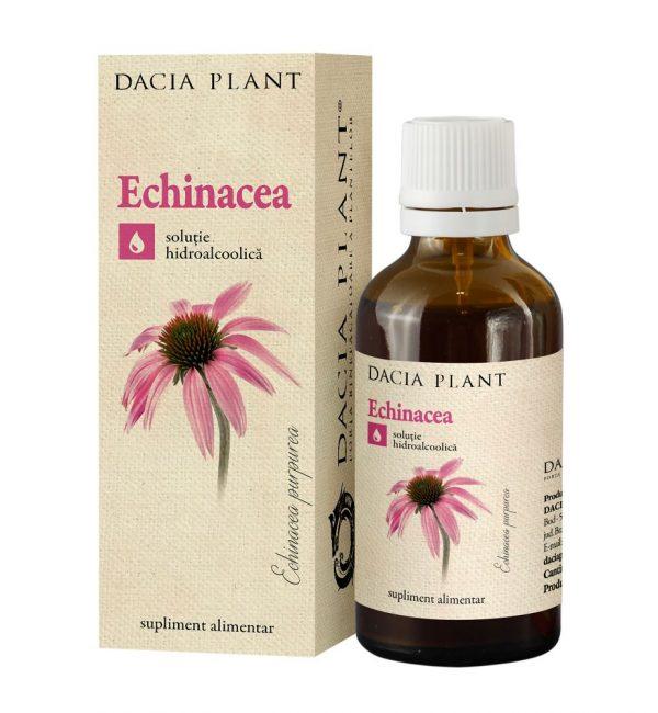 Tinctura Echinacea, Dacia Plant, Supliment Alimentar pentru Functionarea Normala a Sistemului Imunitar, 50 ml