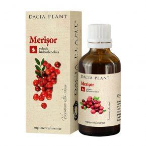 Tinctura Merisor, Dacia Plant, Supliment Alimentar pentru Mentinerea Sanatatii Aparatului Urinar si a Cavitatii Bucale, 50 ml